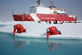 """La NASA descubrió un """"bosque"""" bajo el hielo del ártico, 14 junio 2012 1"""